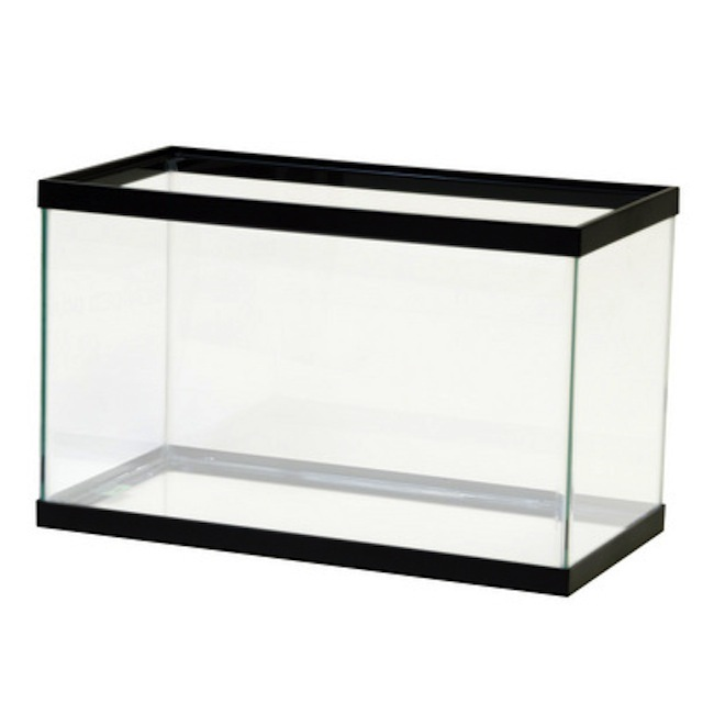 Empty fish tank - photo#9