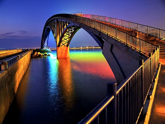 Image result for Taiwan – The Bridge Between Wild Night and Wild Life