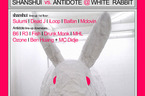 antidote-WhiteRabbit-2s.jpg